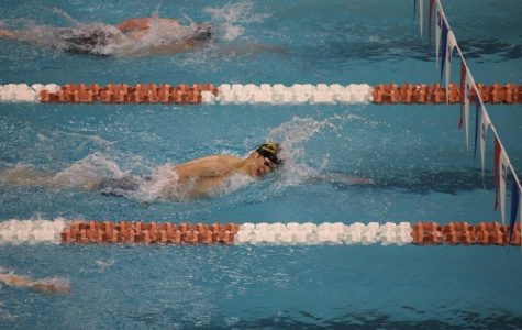 Kolos Nagy wins second in state finals swimming